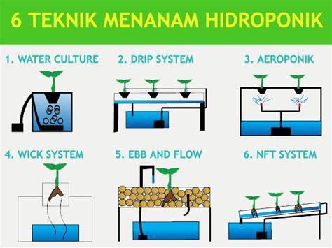 cara membuat hidroponik wick system 6 teknik hidroponik sederhana untuk pemula petani top