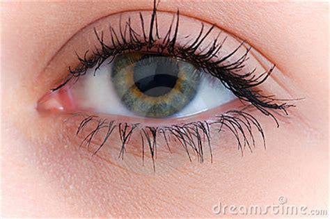 close    human eye royalty  stock photo image
