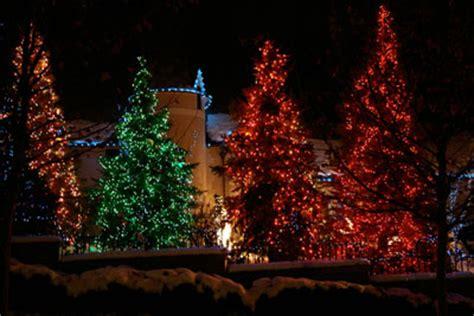Pinetree Lighting by Light Decorating Ideas