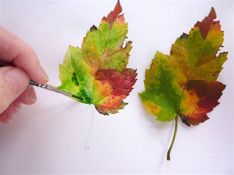 watercolor leaves tutorial 138 best aquarel tutorials images on pinterest