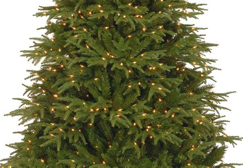 6ft pre lit northern frasier fir feel real artificial