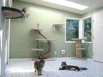 indoor cat room ideas indoor room for the four legged family members