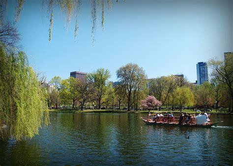 swan boats boston hours 42 hours in boston the crossroad