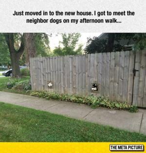 dog house jokes new house jokes kappit