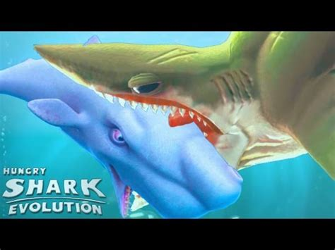 download mp3 from youtube shark youtube to mp3 shark downloader