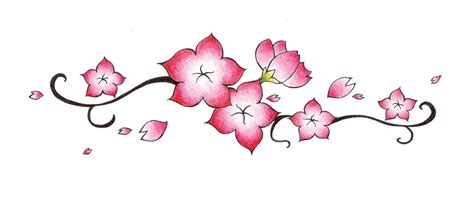 Easy To Draw Japanese Flowers by Cherry Blossom Pencil Step By Step Pencil And In