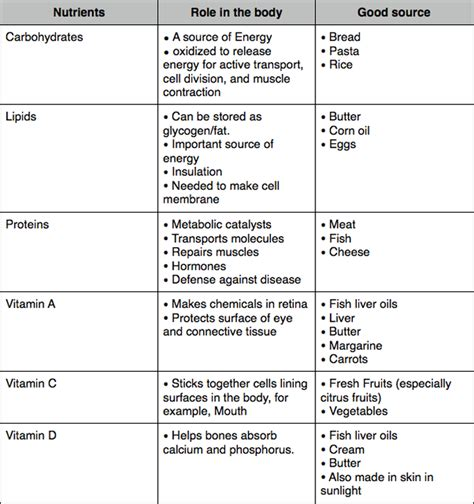 chapter 1 carbohydrates lipids and proteins image gallery lipids and diet