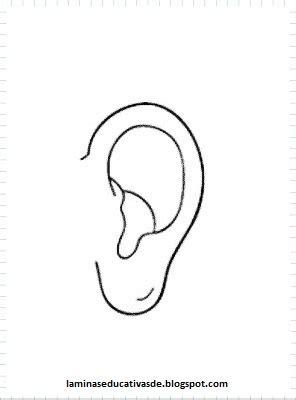 imagenes de ojos y oidos laminas educativas los 5 sentidos