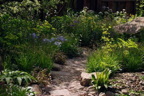 Cox At Chelsea Flower Show by Rhs Chelsea Flower Show The M G Garden Cox Garden