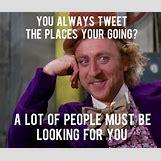 Willy Wonka Meme Funny | 500 x 421 jpeg 106kB