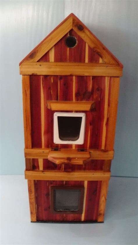 heated outdoor dog house 25 best ideas about heated outdoor cat house on pinterest heated cat house outdoor