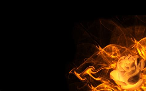 rose fire black background hd wallpaper