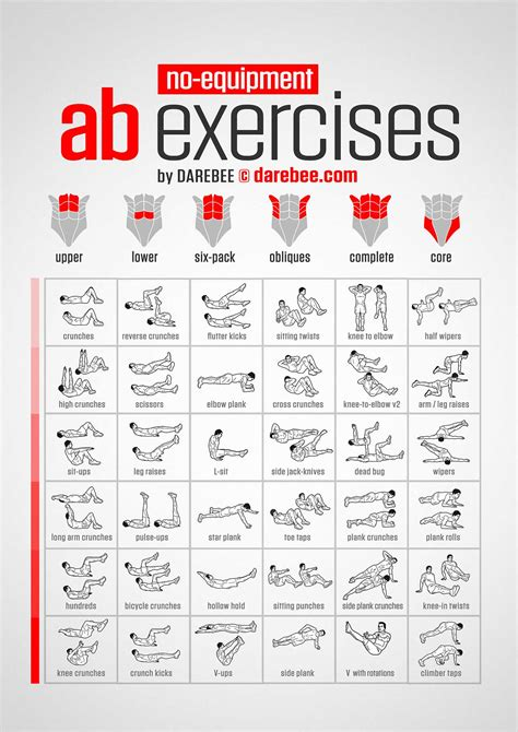 ab exercises   equipment infographic