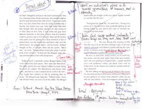 annotated essay exle mentor texts