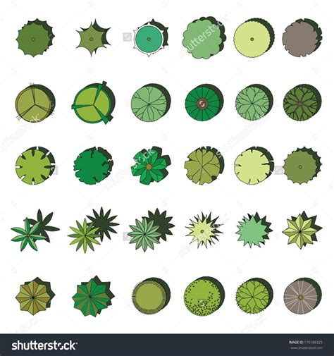 Glass Kitchen Canisters Sets by Landscape Design Vectors Free 28 Images Trees Top View