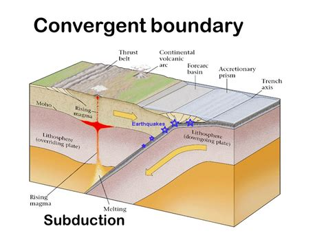 convergent boundary diagram muse of