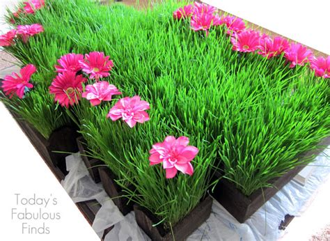 today s fabulous finds wheat grass centerpieces grown on