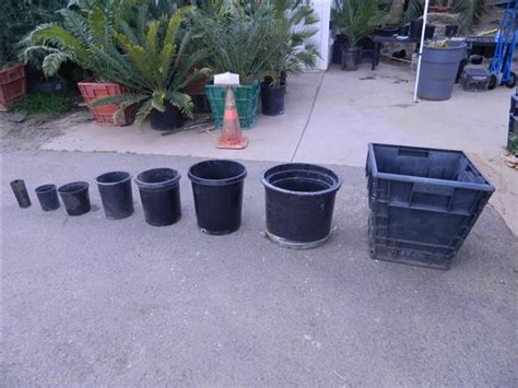 Planter Size by Plant Container Sizes And Descriptions