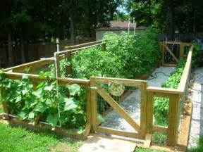 amazing vegetable gardens amazing ideas for a vegetable garden ideas for a vegetable