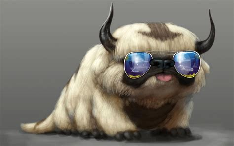 wallpaper cat with sunglasses cool cat backgrounds wallpaper cave