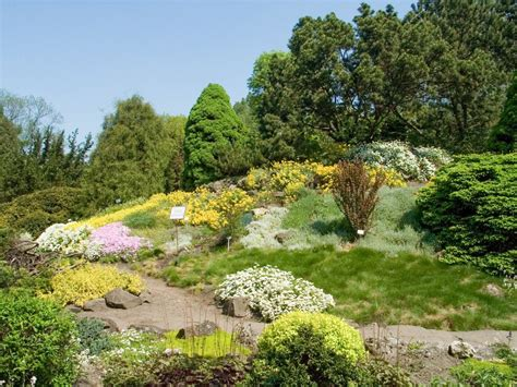 botanic garden of the jagiellonian