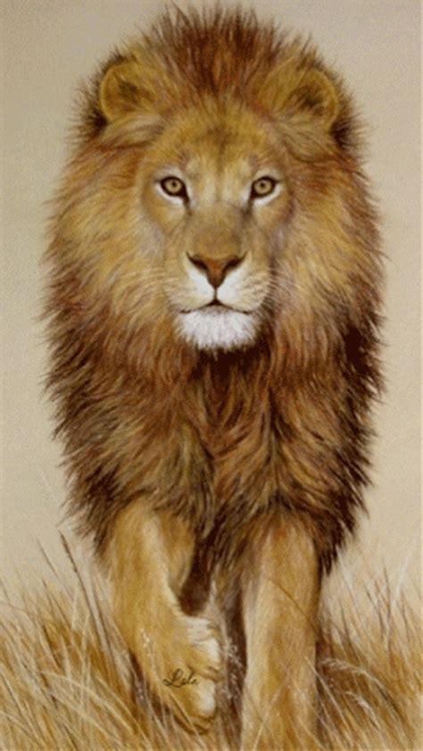 decent image scraps lion animation
