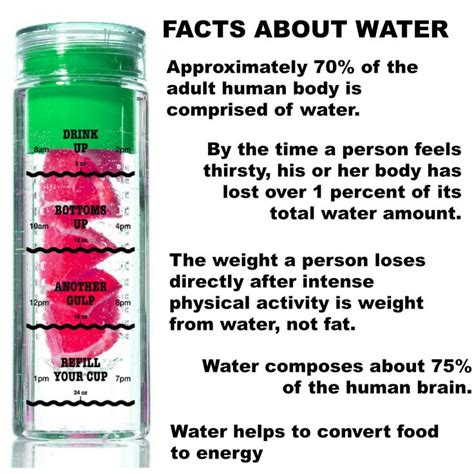 112 best images about water bottle store on infused water recipes fit club and