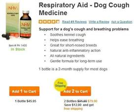 kennel cough home remedies kennel cough remedy pet pictures