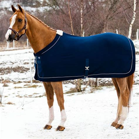cheap rugs for horses best 25 blanket ideas on care diy saddle blankets and tips