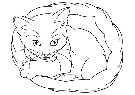 kitten coloring page free printable kitten coloring pages for best