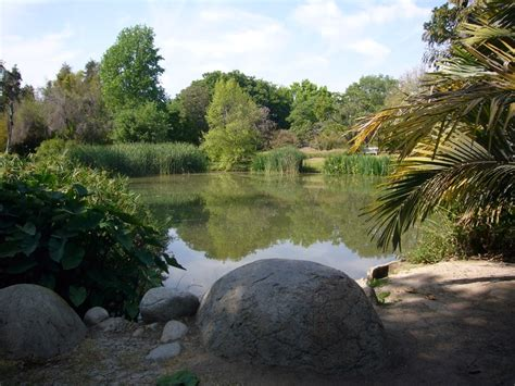 Fullerton Botanical Gardens 86 Best Images About The Town I Live In Fullerton Ca O C On Pinterest The California