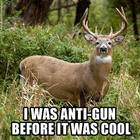 bow hunting scotty fishing hunting pinterest funny