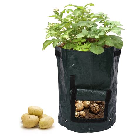 Potato Planter By Planter Bag by Potato Grow Planter Pe Container Wall Hanging Bag Outdoor