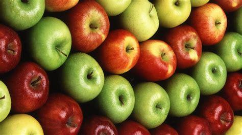 wallpaper apple fruit colorful apple fruit wallpapers 1600x900 522348