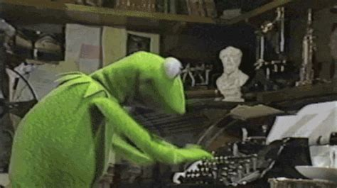 Funny Gifs And Memes - kermit the frog gifs get the best gif on giphy