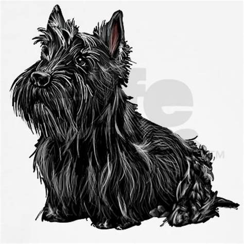 scottish terrier tattoo design 217 best images about scotties on