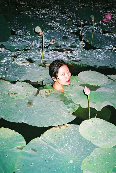 ren hang photos ren hang s intuitive photographs of lily pads and lithe