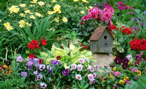 Do You Want A Flower Garden Keep It Simple Gardening Simple Flower Gardens