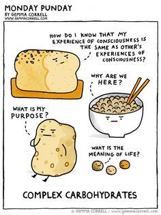 carbohydrates jokes 1000 images about biochemistry carbs on