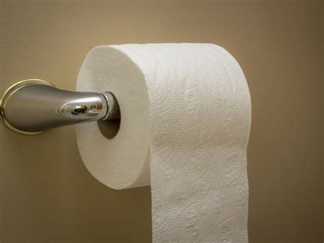 toilet paper research national toilet paper day 5 tidbits about toilet paper