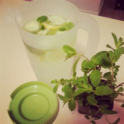 Green Tea Lemon Cucumber Detox by Detox Water Cucumber Lemon Mint