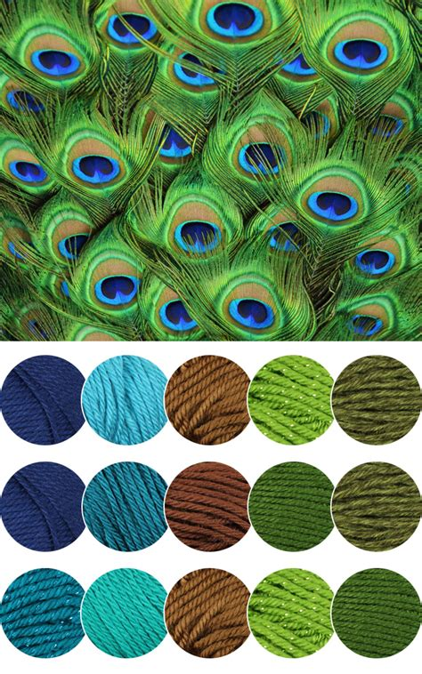 color inspiration peacock color inspiration