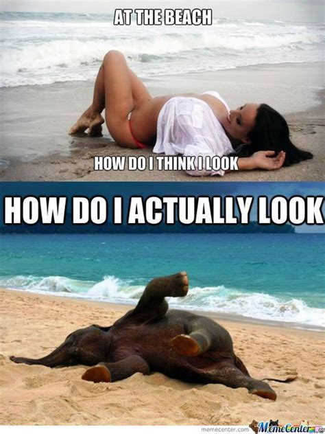 Funny Beach Memes - 65 best images about the funniest thing i saw today on