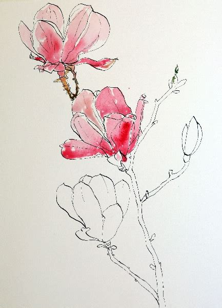 pen tattoo tutorial pen and ink drawing with watercolor wash pen and ink