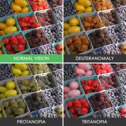 what is it like to be color blind you ll be amazed how with color blindness see the