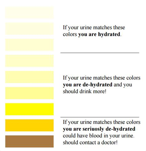 urine color chart urine color chart 7 free for pdf
