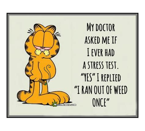 Garfield Memes - garfield stress test ran out of weed once funny cartoon