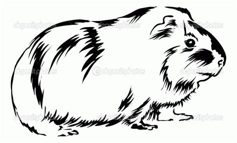 Guinea Pig Coloring Pages To Download And Print For Free Coloring Pages For Children L