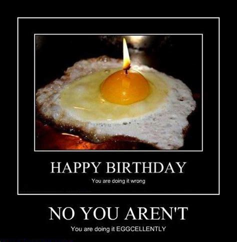 Happy Birthday Humor Quotes Funny Happy Birthday Quotes For Baby Quotesgram
