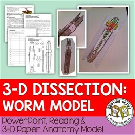 earthworm dissection for middle school 1000 images about science middle school on